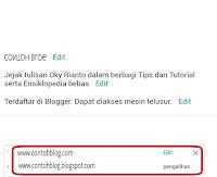 Custom Domain Berhasil