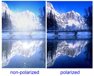 Što su polarizirane naočale?