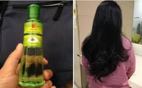 Ingin Punya Rambut Tebal Alami? Gunakan Minyak Kayu Putih! Begini Cara Meracik Dan Menggunakannya!