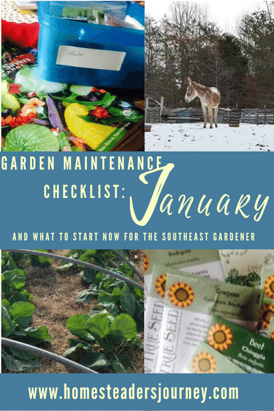 Garden Maintenance checklist for January and what to plant now for the southeast gardener!
