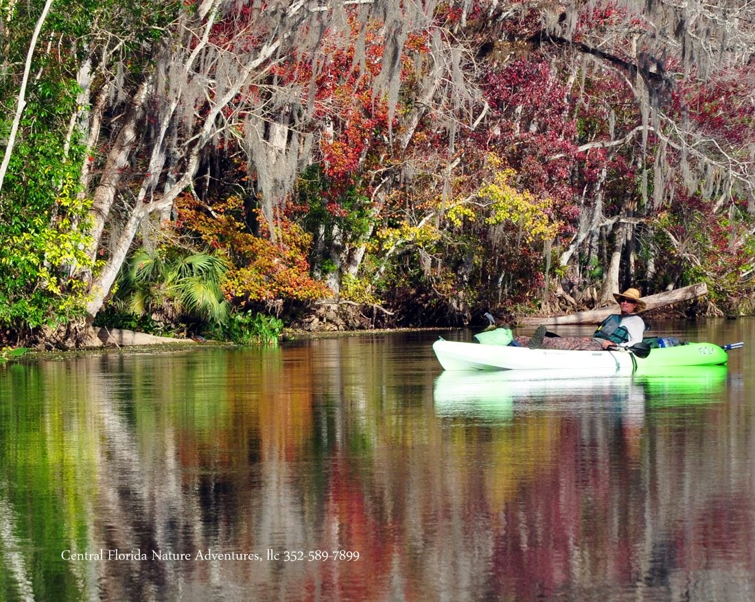 Fall on the Wekiva River