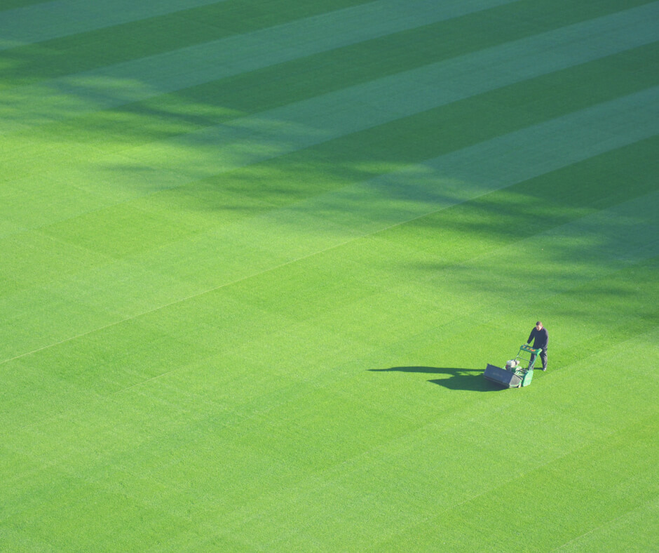 Mowing the lawn, a great chore for teens.
