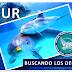 Tour buscando los delfines Mochima carnaval 2017