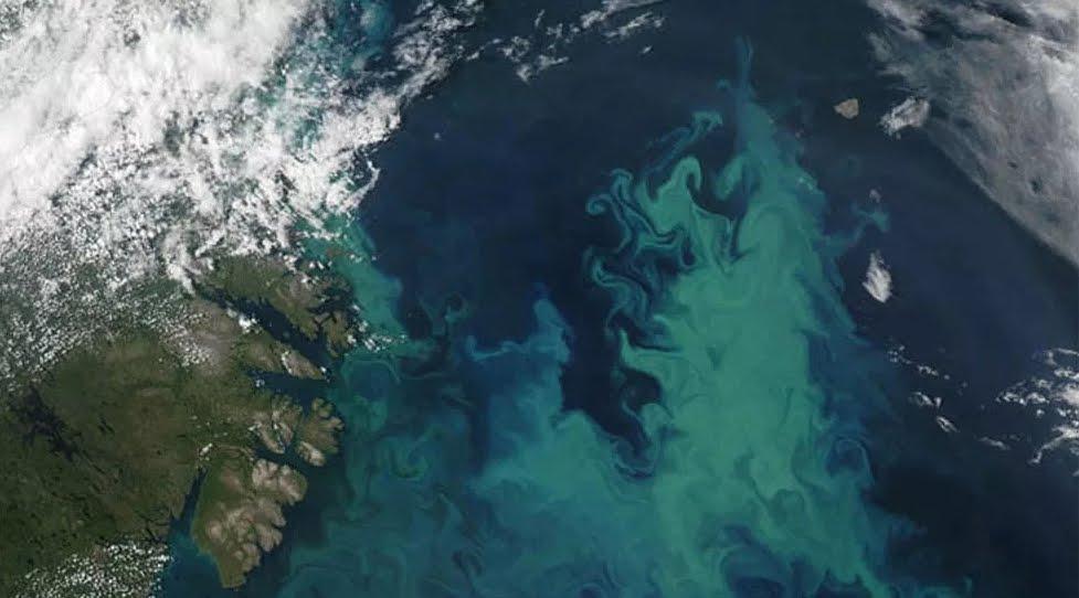 Cambierà Colore degli oceani per il Riscaldamento Globale, altro avvertimento.