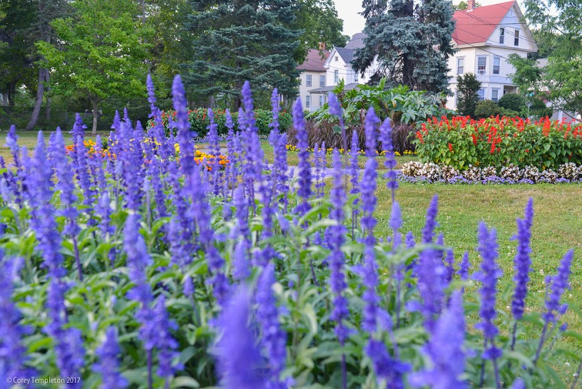 Portland, Maine USA July 2017 photo by Corey Templeton. A few photos of the pleasant landscaping in Fessenden Park on the last day of July.