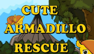Cute Armodillo Rescue