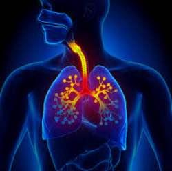 bronşit tedavi yöntemleri
