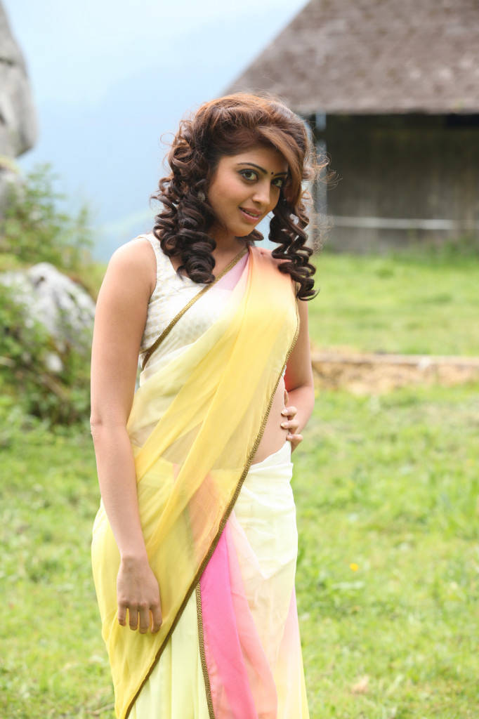 Pranitha Subhash Hip Navel Photos In Yellow Saree Hot