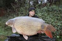 Record karper naar 39 kilo op FZZ See in Oostenrijk