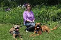 Dr. Christy Hoffman interviewed about her research on dogs, cats and monkeys at Companion Animal Psychology