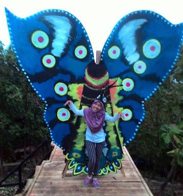 Spot Kupu-kupu Wisata Puncak Bukit Pandang Durensawit Kayen Pati