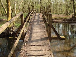 Pont des scouts sur la Clauge