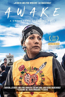 Awake, a Dream from Standing Rock <br><span class='font12 dBlock'><i>(Awake, a Dream from Standing Rock )</i></span>