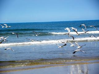 Gaywadi Beach, Ganpatipule