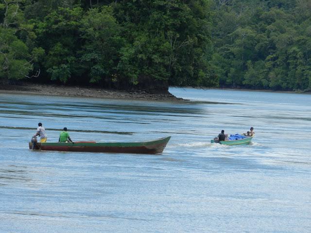 Orang kampung naik perahu motor ke dalam kampung di Teluk Arguni