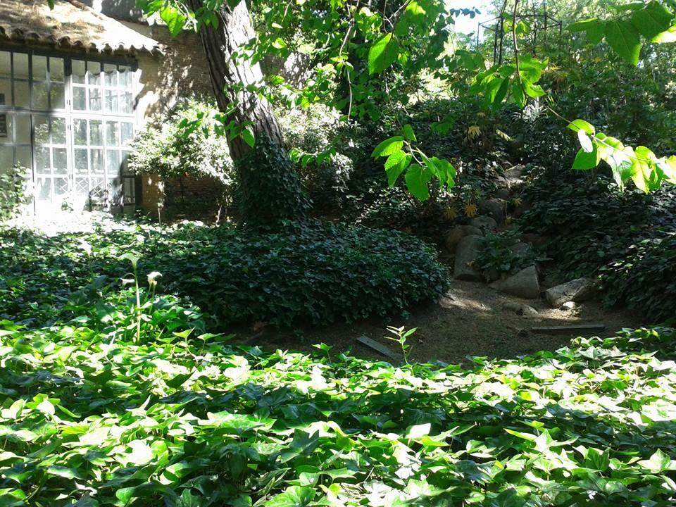 Los secretos de alcal de henares for Cementerio jardin de alcala de henares