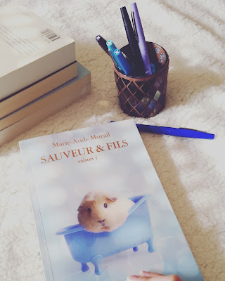 Sauveur et Fils tome 1 de Marie-Aude Murail