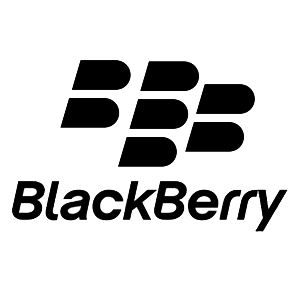 File Other Blackberry Solution