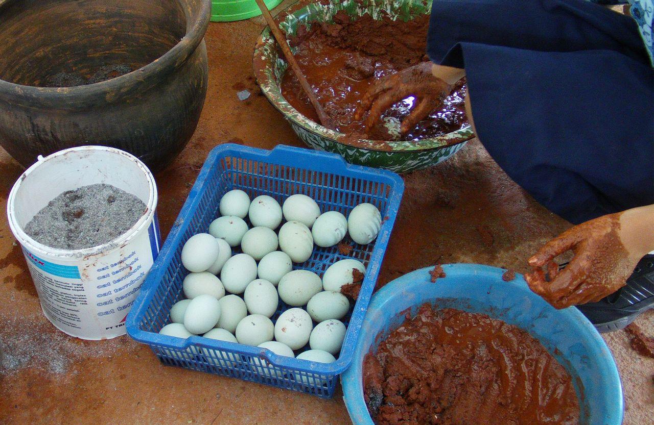Cara membuat telur asin berkualitas (slbpamardiputra.wordpress.com)