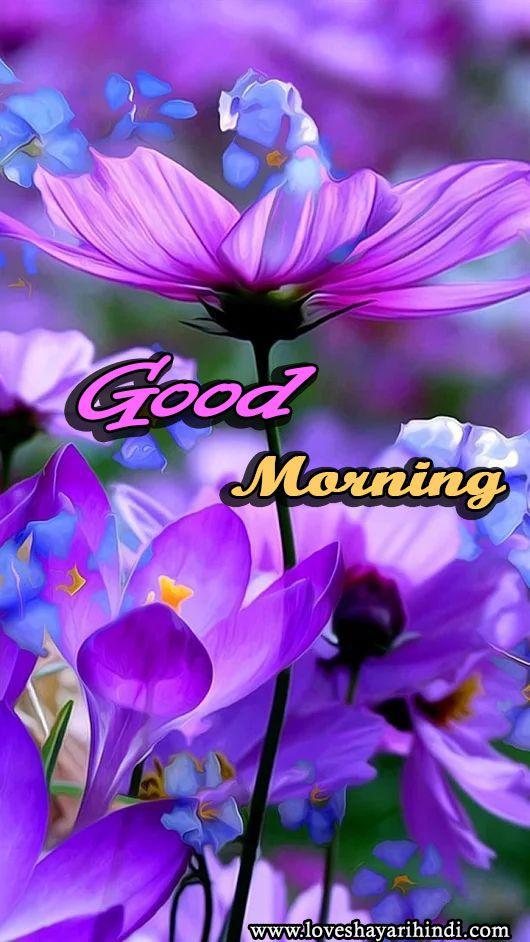 Top Good Morning Shayari images | गुड मॉर्निंग इमेज हिंदी