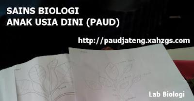 Materi Sains Biologi Untuk Anak Usia Dini ~ Sains PAUD