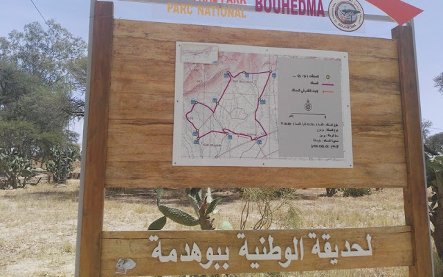 المحميات الطبيعية في تونس ، الحديقة الوطنية بـبوهدمة