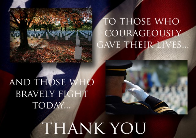 Dedicated To Heroes: 2012 Veterans Day Edition: THANK YOU!