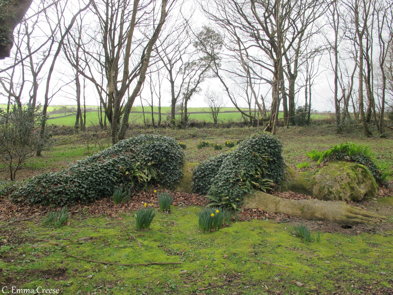 Finding the Lost Gardens of Heligan, Cornwall