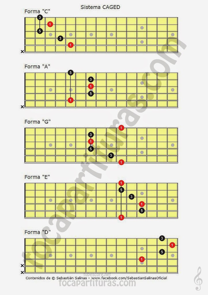 Sistema CAGED para visualizar Acordes en Guitarra