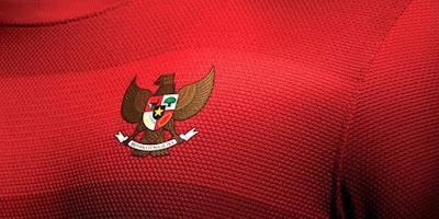 Timnas Indonesia di Piala AFF 2016