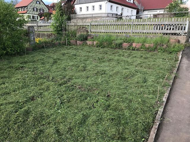 ganzflächig mit Rasenschnitt gemulchte Gartenfläche (c) by Joachim Wenk