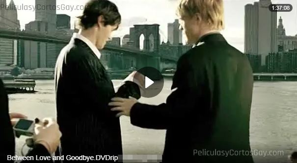 CLIC PARA VER VIDEO Between Love and Goodbye - PELÍCULA - EEUU - 2008