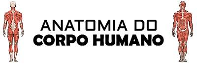Resumo de Anatomia Humana, baixar livro de resumo de anatomia, livro de anatomia grátis, resumo de anatomia download, anatomia humana