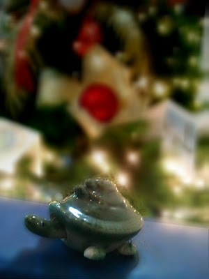 Christmas rush photo of turtle on Christmas Tree background