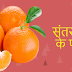Amazing Benefits Of Oranges - संतरा खाने के फायदे