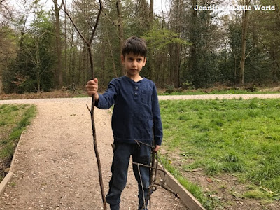 Child holding sticks in the forest