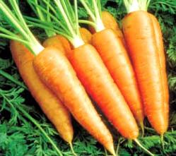 Foto de zanahorias de color anaranjado