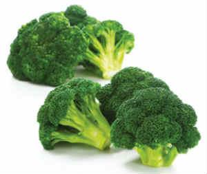 alimentos-saudaveis-brocolos-brocolis-ca