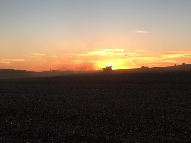 combine harvester at sunset UK #mysundayphoto