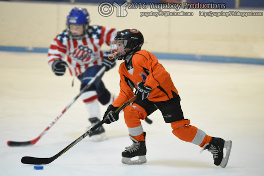 4th Annual Lakeshore MItes Holiday Hockey Tournament
