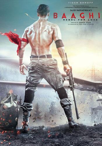 Baaghi 2 2018 Hindi Movie Download