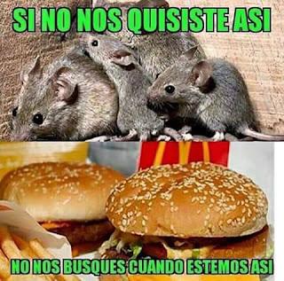 Memes,Imagenes Chistosas