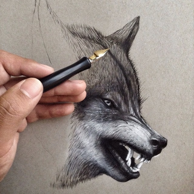 04-Wolf-WIP-Jonathan-Martinez-Art-of-the-Endangered-Paintings-and-Drawings-www-designstack-co