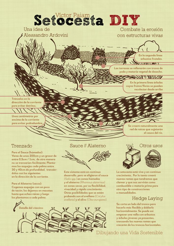 Infografía - SetoCesta