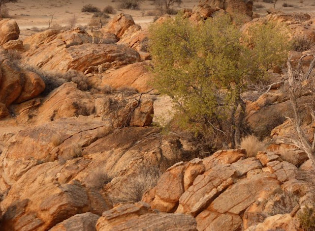 deserto roccioso ad Aus
