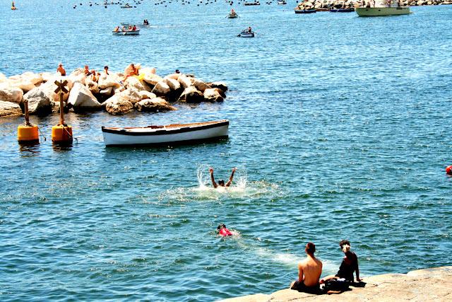 mare, acqua, bagnanti, cane, salvataggio, barche, scogli, ragazzi