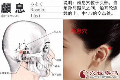 顱息穴位 | 顱息穴痛位置 - 穴道按摩經絡圖解 | Source:xueweitu.iiyun.com
