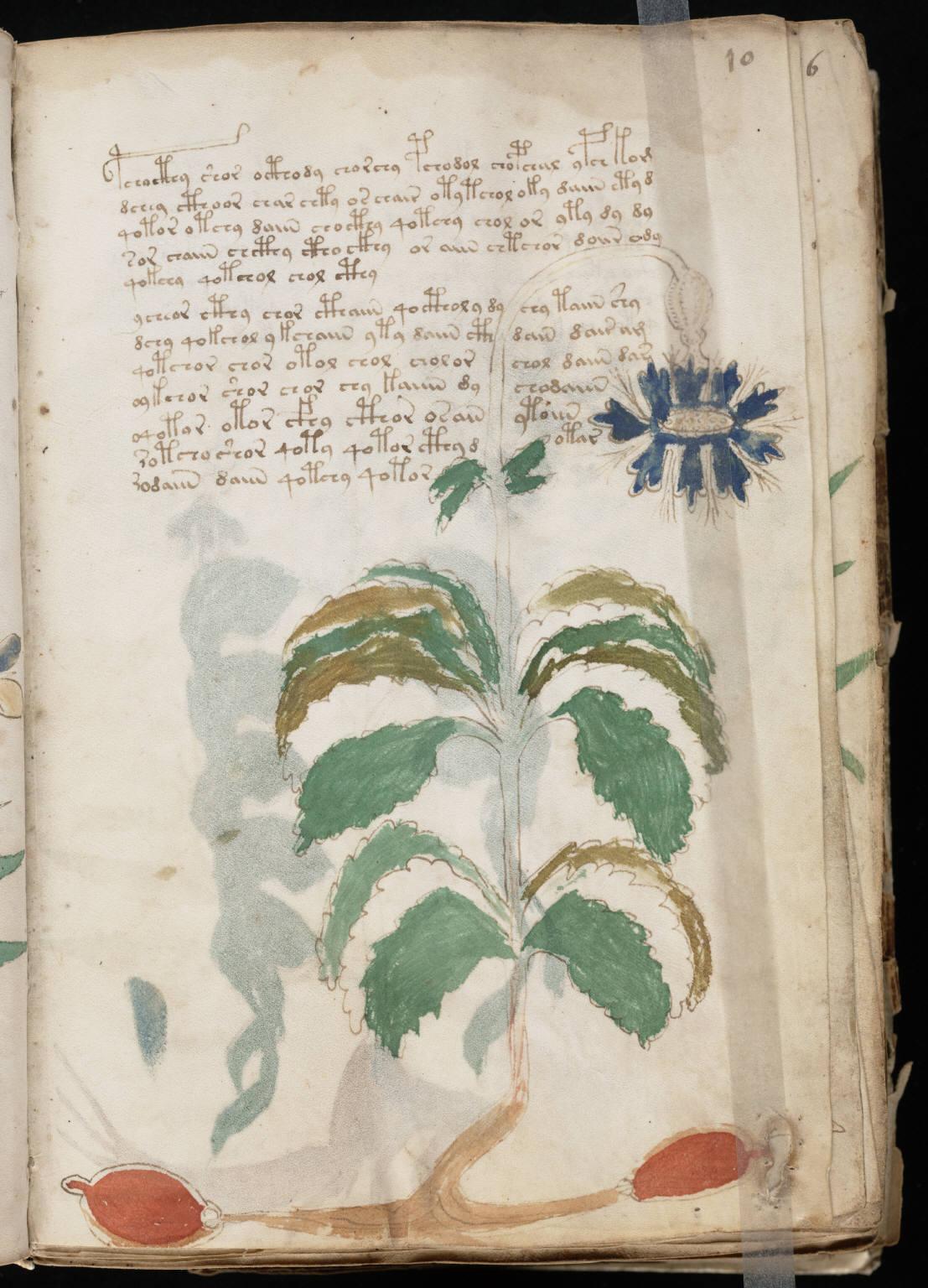 manuscrito021