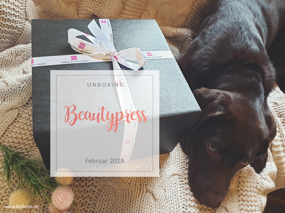 beautypress News Box - Februar 2019