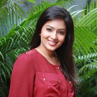 Exotic eyes Nikeesha patel in tights at movie press meet